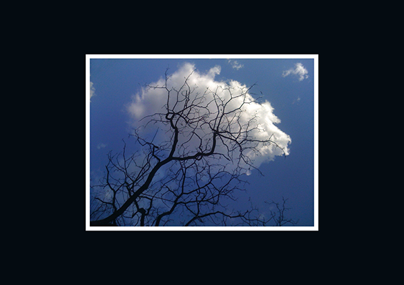 nuage cérébral