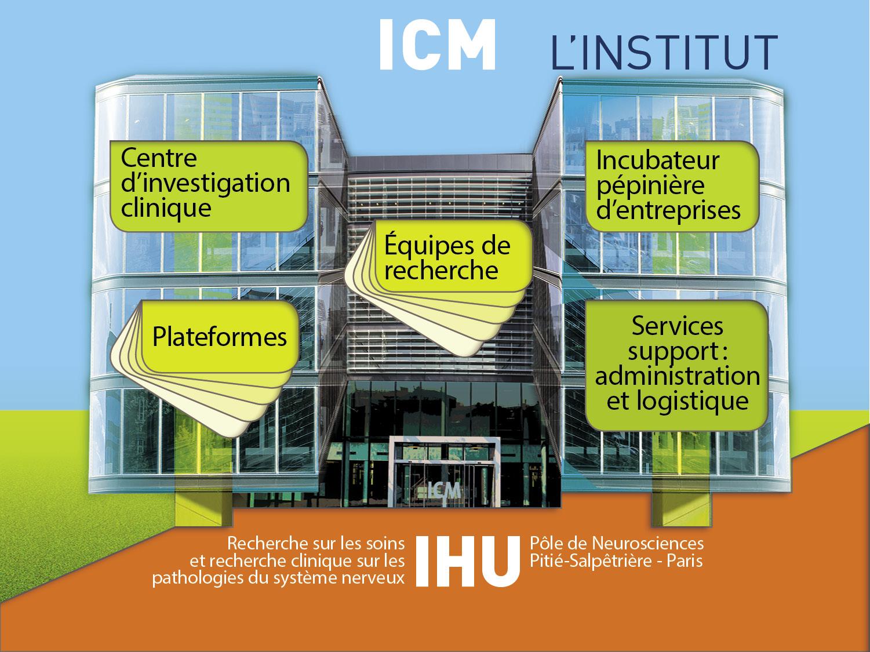 @ Institut du Cerveau - ICM