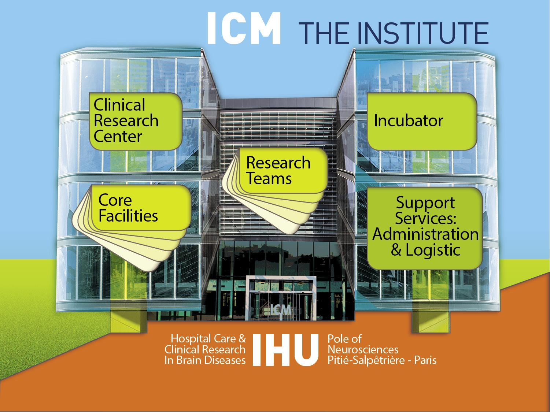 © Institut du Cerveau - ICM