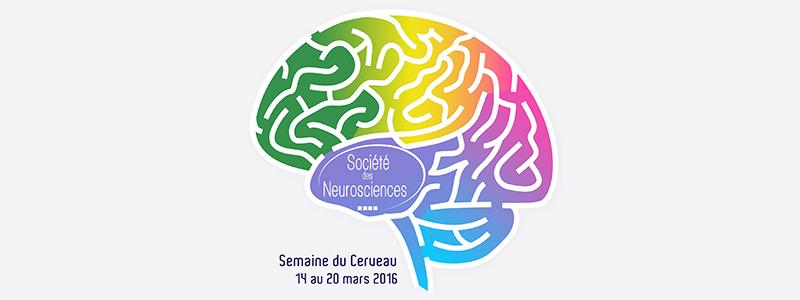 semaine du cerveau 2016