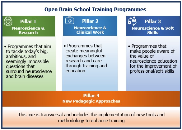 Open brain school training programmes