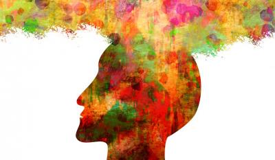 Perception des couleurs par le cerveau