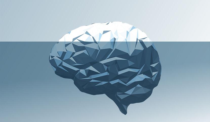 Iceberg parkinson ICM