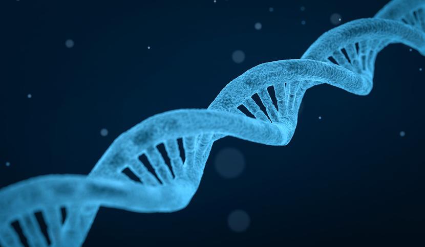 The ICM, member of a major international program on the genetics of Parkinson's disease