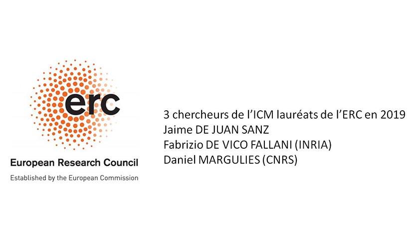 Trois chercheurs de l'ICM obtiennent une subvention européenne compétitive grâce à l'excellence scientifique de leur projet de recherche.