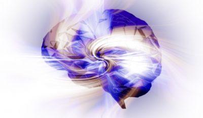 Donner du sens au monde - les bases cérébrales de l'abstraction